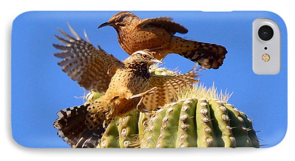 IPhone Case featuring the photograph Careful Landing by Marilyn Smith
