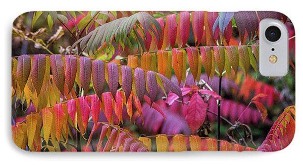 IPhone 7 Case featuring the photograph Carnival Of Autumn Color by Bill Pevlor