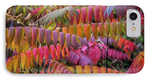 IPhone Case featuring the photograph Carnival Of Autumn Color by Bill Pevlor