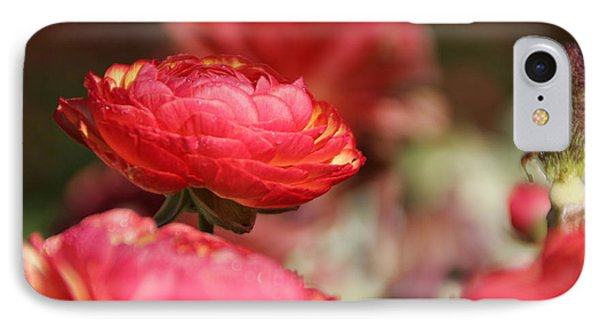 Carnival Of Flowers 06 IPhone Case by Andrea Jean