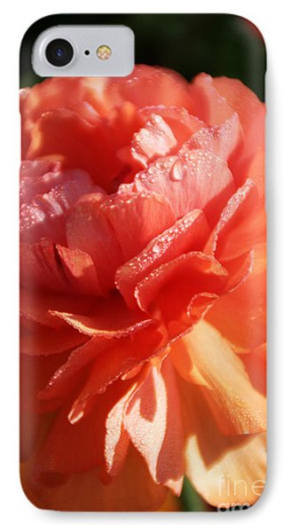 Carnival Of Flowers IPhone Case by Andrea Jean