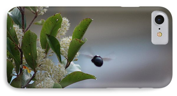 Carpenter Bee In Flight Phone Case by Colleen Cornelius