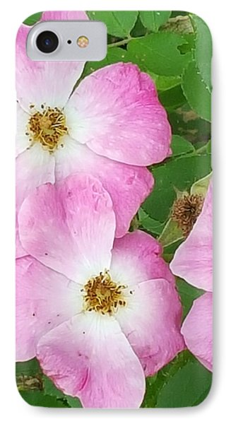 Carpet Roses IPhone Case