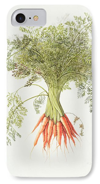 Carrots IPhone 7 Case by Margaret Ann Eden