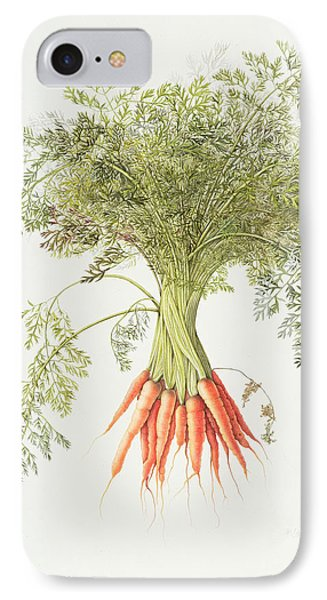 Carrots IPhone Case by Margaret Ann Eden