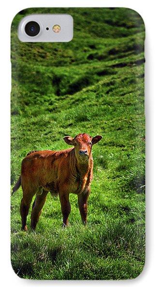 Castleton Bullock IPhone Case by Meirion Matthias