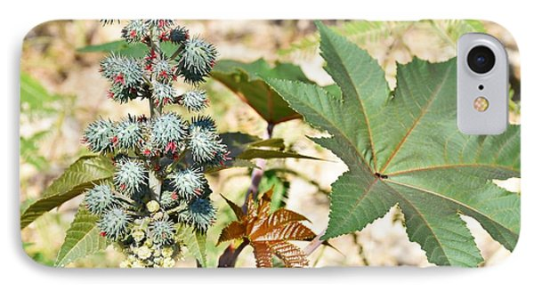 IPhone Case featuring the photograph Castor Oil Plant by Ray Shrewsberry