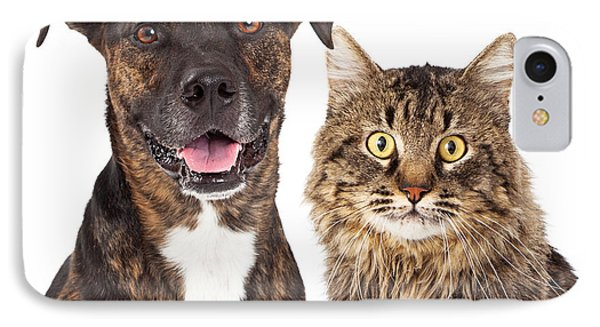 Cat And Dog Closeup IPhone Case by Susan Schmitz