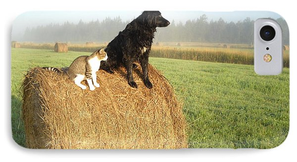Cat And Dog On Hay Bale IPhone Case