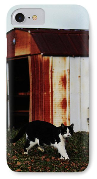 Cat And The Tool Shed IPhone Case by Kim Henderson