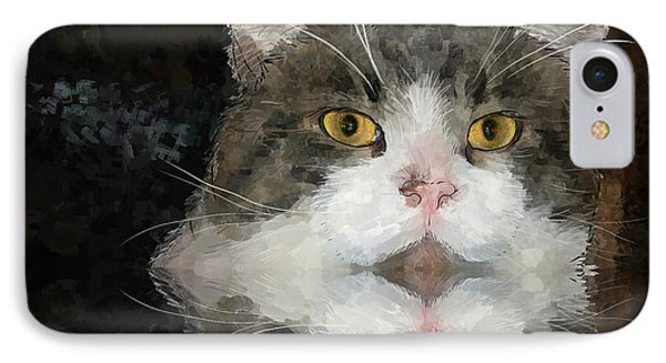 Cat At The Table IPhone Case by Debra Baldwin