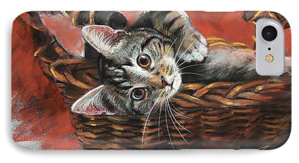 Cat In The Basket IPhone Case by Ylli Haruni