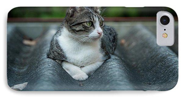 Cat In The Cradle Phone Case by Venura Herath