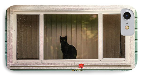 Cat In The Window IPhone Case by Robert Frederick