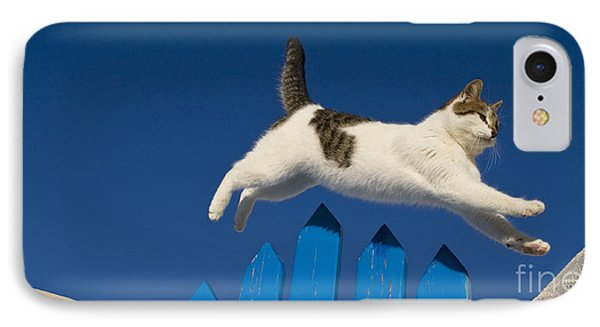 Cat Jumping A Gate Phone Case by Jean-Louis Klein & Marie-Luce Hubert