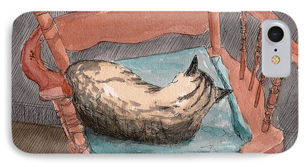 Cat Nap 2001 IPhone Case by Arthur Barnes