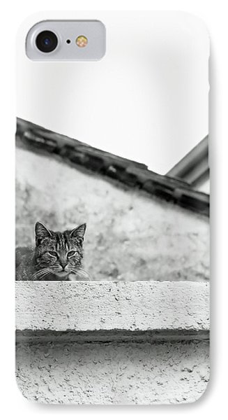 Cat On A Roof, Varenna IPhone Case by Brooke T Ryan
