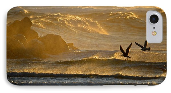 Catch Of The Day - Cape Cod Bay IPhone Case