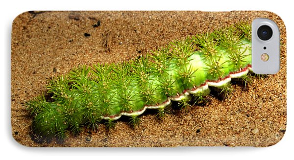 IPhone Case featuring the photograph Caterpillar 009 - Macro by George Bostian