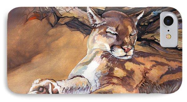 Catnap IPhone Case by J W Baker