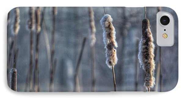 Cattails In The Winter IPhone Case by Sumoflam Photography