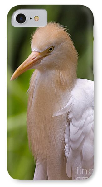 Cattle Egret IPhone Case by Louise Heusinkveld