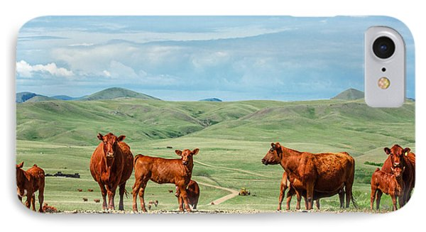Cattle Guards IPhone Case by Todd Klassy