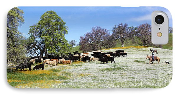 Cattle N Flowers IPhone Case by Diane Bohna