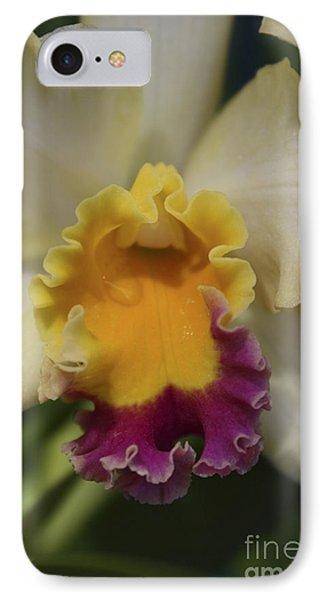Cattleya  IPhone Case by Marilyn Carlyle Greiner