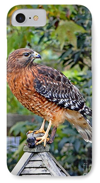IPhone Case featuring the photograph Caught In The Talons by Sue Melvin