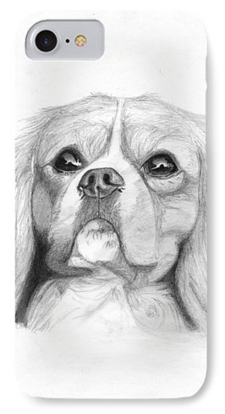 Cavalier King Charles Spaniel 2 IPhone Case by David Smith