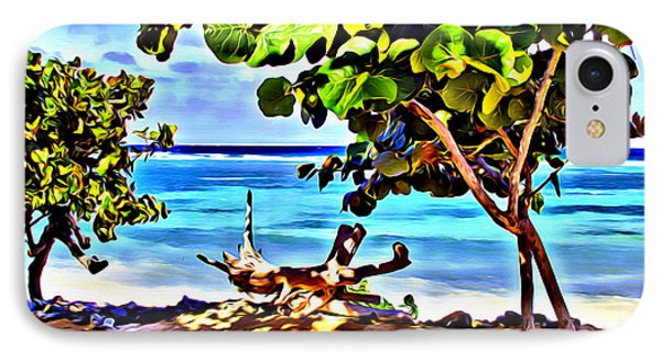 Cayman Cove IPhone Case by Carey Chen