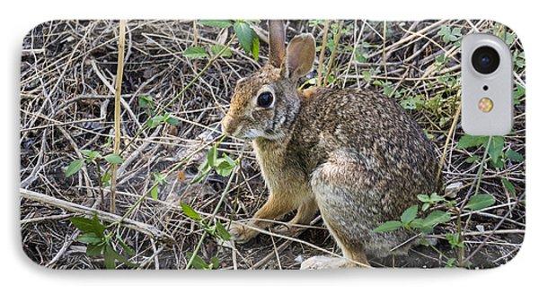 Cedar Hill Bunny IPhone Case