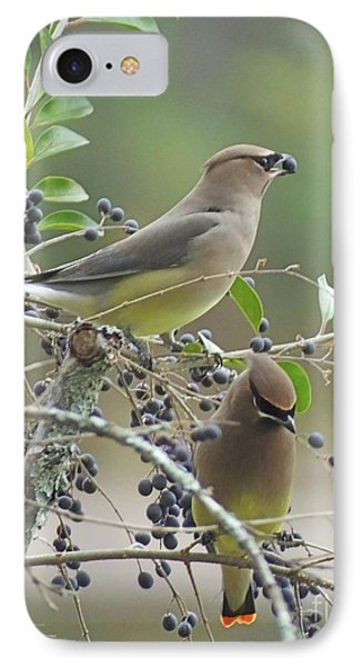 Cedar Wax Wings IPhone 7 Case by Lizi Beard-Ward