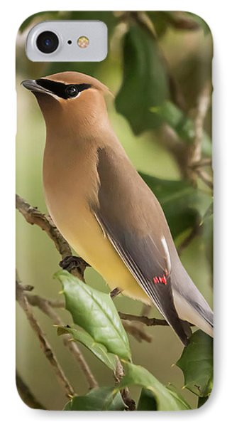 Cedar Waxing iPhone 7 Case - Cedar Waxwing Portrait by Terry DeLuco