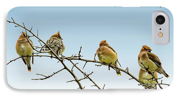 Cedar Waxwings IPhone 7 Case by Geraldine Scull