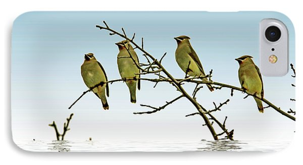 Cedar Waxwings On A Branch IPhone 7 Case by Geraldine Scull