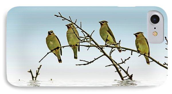 Cedar Waxwings On A Branch IPhone Case by Geraldine Scull