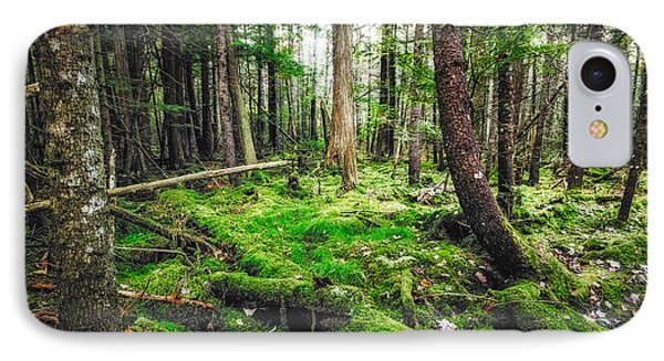 IPhone Case featuring the photograph Cedar Woods by Robert Clifford
