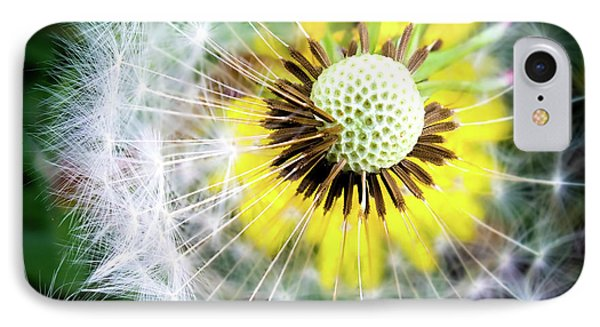 Celebration Of Nature IPhone Case by Karen Wiles