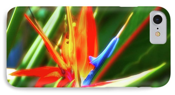IPhone Case featuring the photograph Celestial Skies Bird Of Paradise by Aimee L Maher Photography and Art Visit ALMGallerydotcom