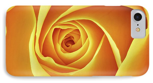 Center Of A Yellow Rose IPhone Case by Jim Hughes