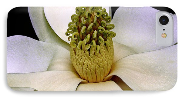 IPhone Case featuring the photograph Centerpiece - Magnolia Blossom 010 by George Bostian