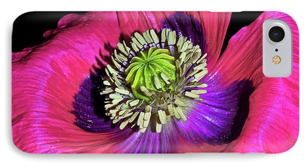 Centerpiece - Poppy 020 IPhone Case by George Bostian
