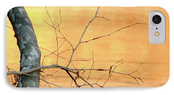 IPhone Case featuring the photograph Chagrin River Gold by Bruce Patrick Smith