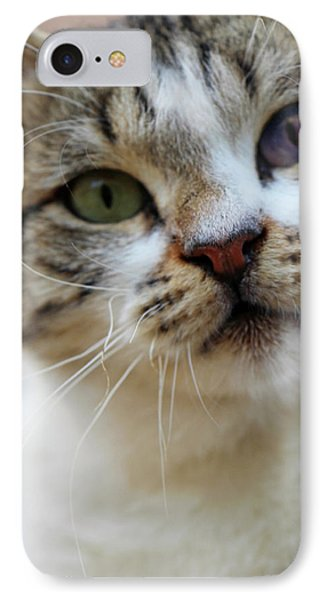 IPhone Case featuring the photograph Changing Colors by Munir Alawi