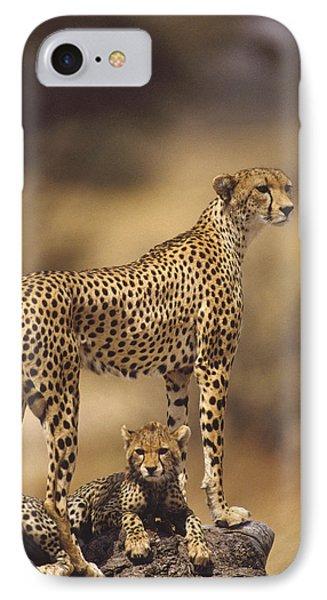 Cheetah Acinonyx Jubatus Mother With Phone Case by Gerry Ellis