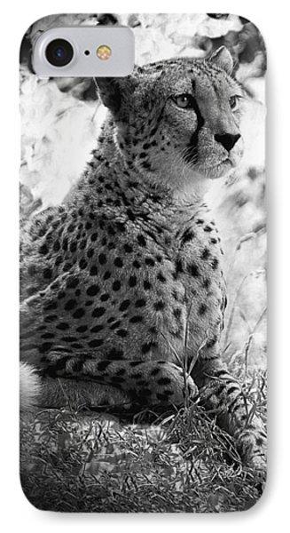 Cheetah B W, Guepard Black And White IPhone Case