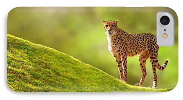 Cheetah On A Hill IPhone Case by Susan Schmitz