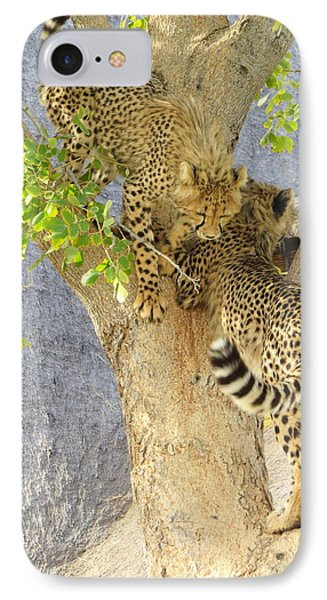 Cheetah Traffic Jam IPhone Case